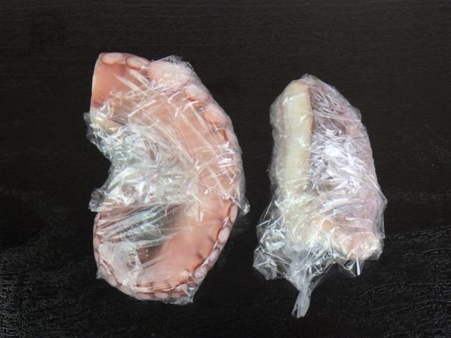 タコ 冷凍方法