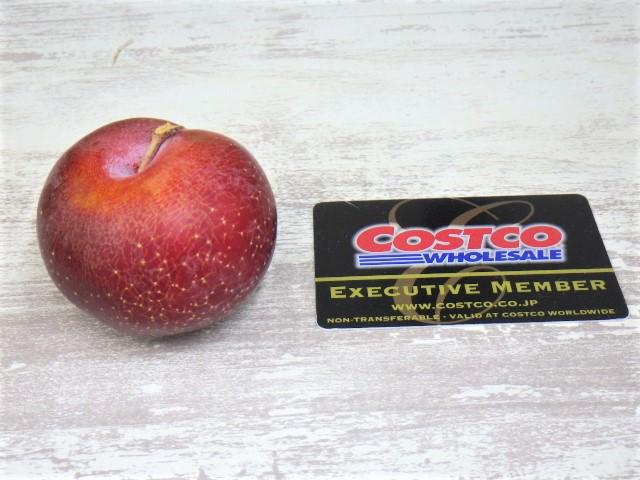 コストコのカリフォルニア産プラム1個と会員証のサイズ比較